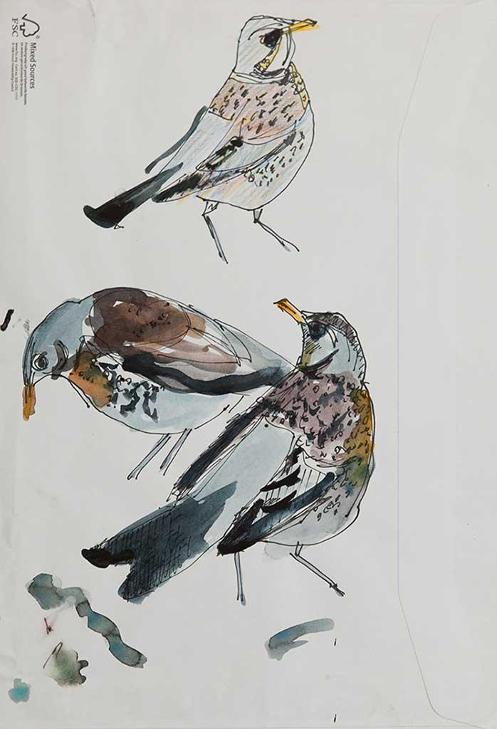 vogels 4